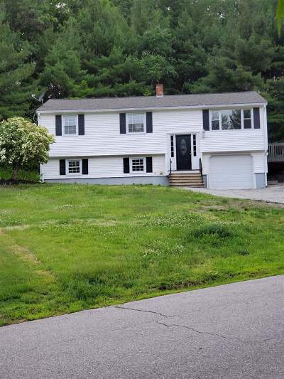 Windham Single Family Home For Sale: 10 Gertrude Road