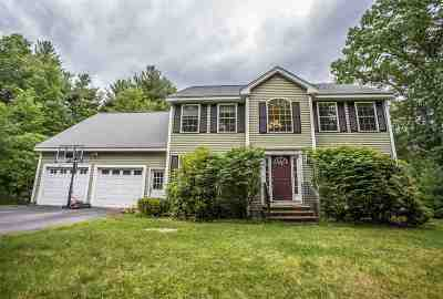 Milford Single Family Home For Sale: 18 Wyman Lane