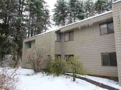 Chittenden County Condo/Townhouse For Sale: 67 Hawthorne Circle