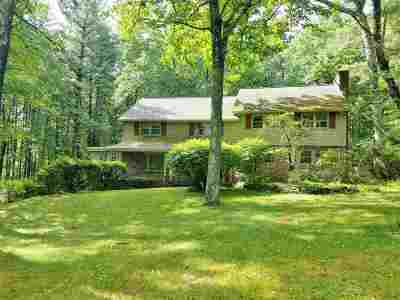 Nashua Single Family Home For Sale: 44 Indian Rock Road