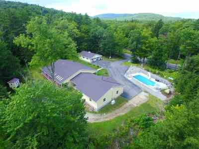 Alton NH Single Family Home For Sale: $650,000