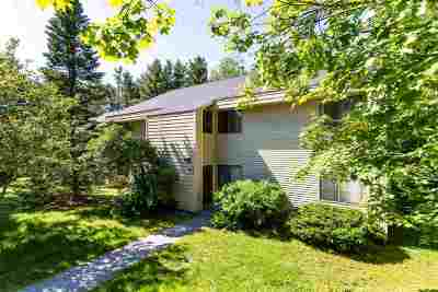 Chittenden County Condo/Townhouse For Sale: 12 Bayberry Lane