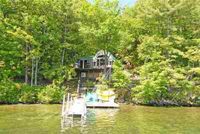 Alton Single Family Home For Sale: 624 Rattlesnake Island