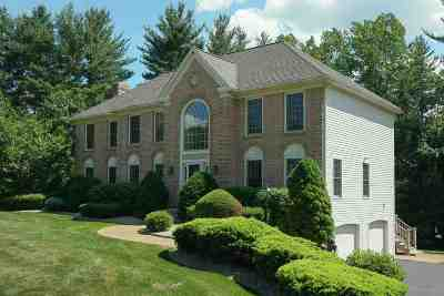 Windham Single Family Home For Sale: 18 Bedros Street