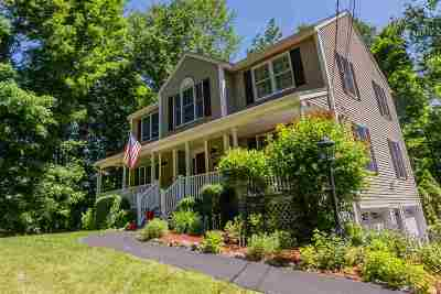 Derry Single Family Home For Sale: 360 Island Pond Road Common