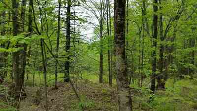 Montgomery Residential Lots & Land For Sale: Hazens Notch Road