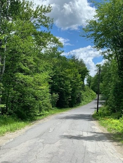 Bethlehem Residential Lots & Land For Sale: Lot 39.2 Cherry Valley Road