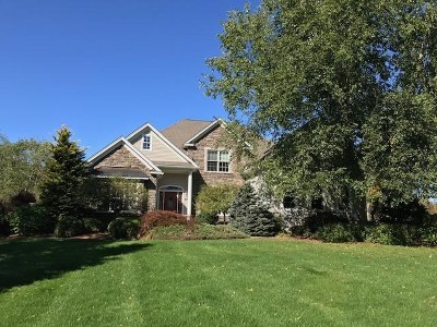 Hollis Single Family Home For Sale: 89 Wright Road