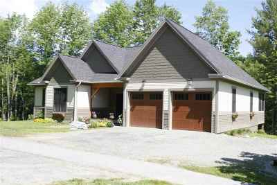 Stowe Single Family Home For Sale: 290 Thomas Lane