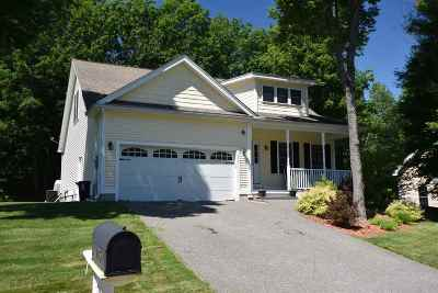 Laconia Single Family Home For Sale: 105 Natures View Drive