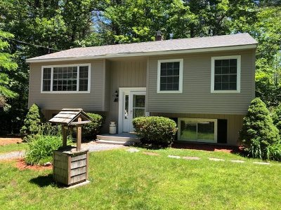Laconia Single Family Home For Sale: 50 Pine Notch Circle
