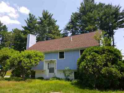 Nashua Single Family Home Active Under Contract: 17 Portchester Drive
