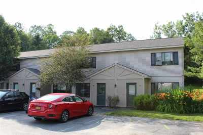 Hartford Condo/Townhouse For Sale: 133 Colonial Drive #507