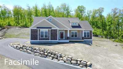Milford Single Family Home For Sale: 137 Boynton Hill Road #46