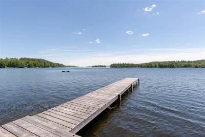 Moultonborough Single Family Home For Sale: 14 Lake Shore Drive
