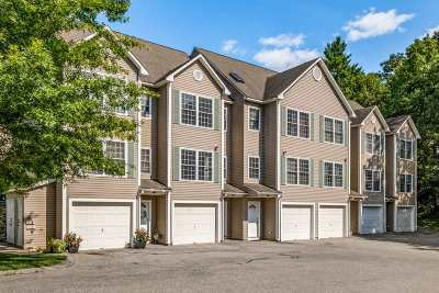 Hudson Condo/Townhouse For Sale: 16 Intervale Court #B