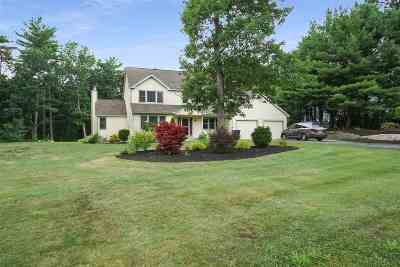 Hudson, Litchfield, Nashua, Londonderry Single Family Home For Sale: 7 Jenny Hill Lane