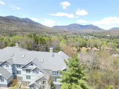 Waterville Valley Condo/Townhouse For Sale: 76 Noon Peak Road #3A