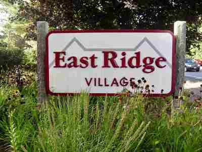 Merrimack Condo/Townhouse For Sale: 15a East Ridge Road #B-1