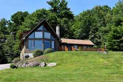 Gilford Single Family Home For Sale: 20 Checkerberry Lane