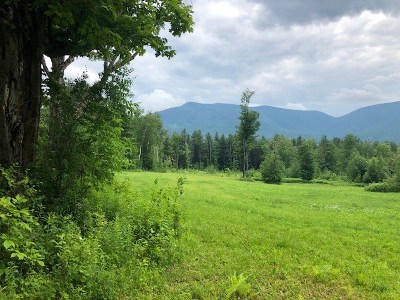 Danby Residential Lots & Land For Sale: Old Maple Lane Lot 1b