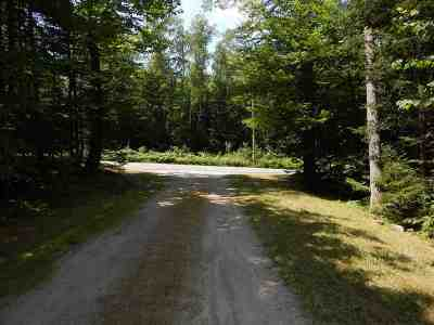 Newbury Residential Lots & Land For Sale: Lot 2 Route 103a