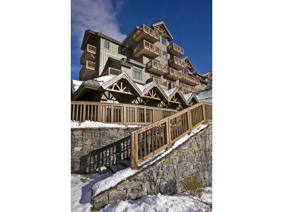 Stowe Condo/Townhouse For Sale: 7412 Mountain Road #03-86