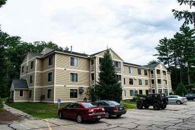 Conway Condo/Townhouse For Sale: 19 Saco Street #19