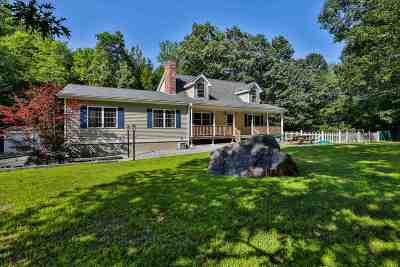 Amherst Single Family Home For Sale: 29 Baboosic Lake Rd. Road