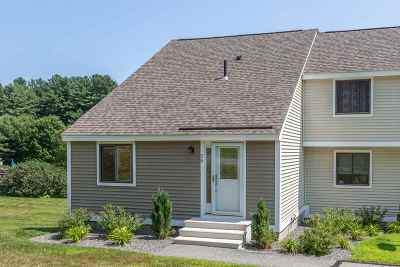 Londonderry Condo/Townhouse For Sale: 67 Old Nashua Road #59