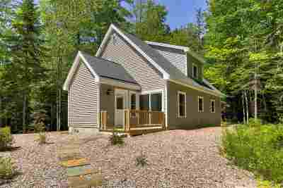 Wolfeboro Single Family Home For Sale: 453 Stoddard Road
