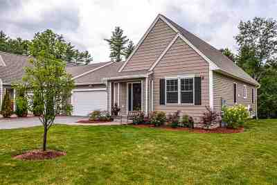 Chester Single Family Home For Sale: 246 Villager Road