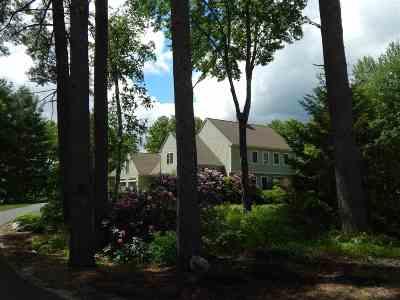 Newbury Single Family Home For Sale: 10 Mountainside Drive
