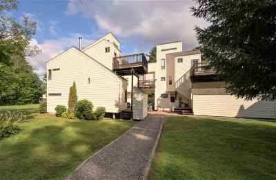 Thornton Condo/Townhouse For Sale: 71 Waterville Acres Road #1