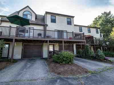 Rochester Condo/Townhouse For Sale: 426 Ledgeview Drive