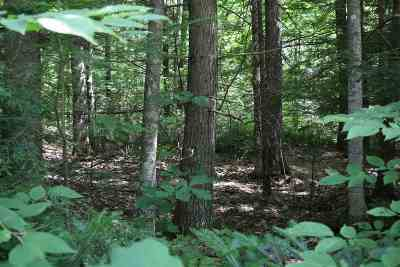 Haverhill NH Residential Lots & Land For Sale: $6,300