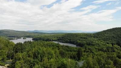 New Hampton Single Family Home For Sale: 83 Mountain Vista Drive