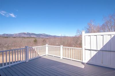 Conway Single Family Home For Sale: 1000 White Mountain Highway
