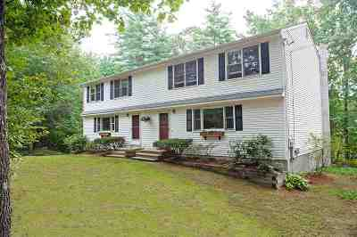 Pembroke Single Family Home For Sale: 131a Tina Drive