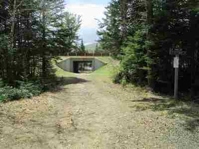 Waterville Valley Residential Lots & Land For Sale: 30 Moose Run #30