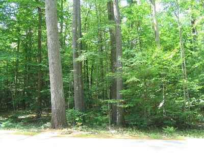 Moultonborough Residential Lots & Land For Sale: 32 Shaker Jerry Road