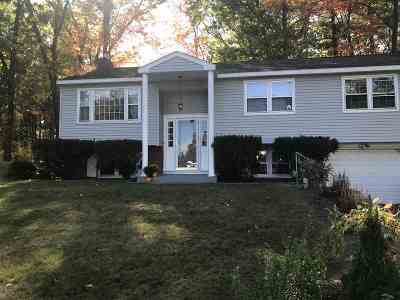 Nashua Single Family Home For Sale: 6 Wellesley Road