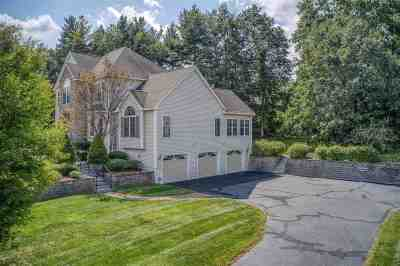 Nashua Single Family Home For Sale: 23 Tanglewood Drive