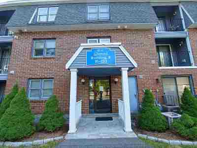 Nashua Condo/Townhouse For Sale: 104 Bluestone Drive