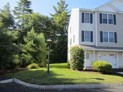 Goffstown Condo/Townhouse For Sale: 2-20 Larch Street #20