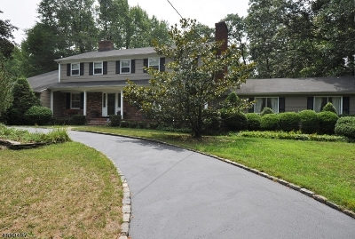 Scotch Plains Twp. Single Family Home For Sale: 10 Heritage Lane
