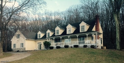 Long Valley Single Family Home For Sale: 503 Drakestown Rd