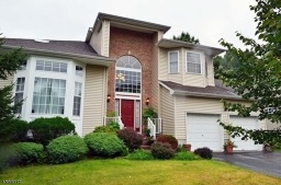 Roxbury Twp. Single Family Home For Sale: 129 Lazarus Dr