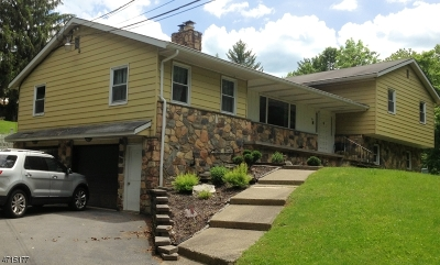 Franklin Boro Single Family Home For Sale: 364 Scott Rd