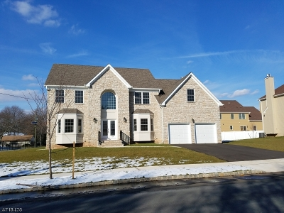 Piscataway Twp. Single Family Home For Sale: 409 Jarrard St